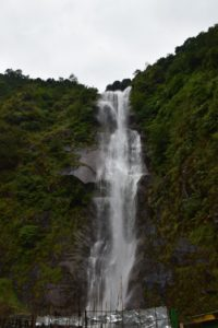 Amitabh Bachchan Falls